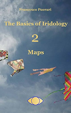 The-Basics-of-Iridology-Maps